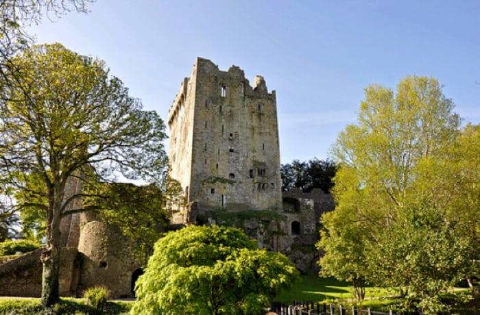 Irish Castle